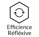formation efficience reflexive